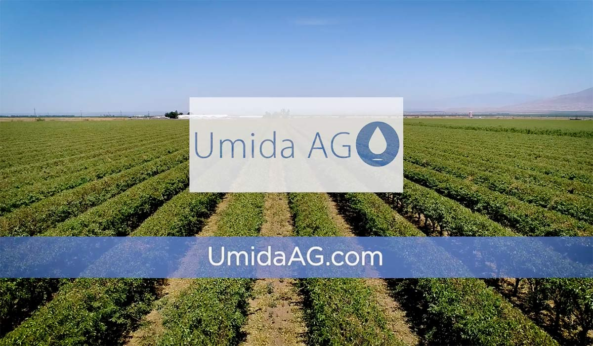 Agriculture irrigation system: Groundwater recharge to become SGMA compliant